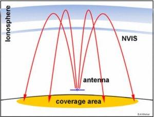 NVIS Pattern-2.JPG