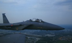 Eagle on wing-01.jpg