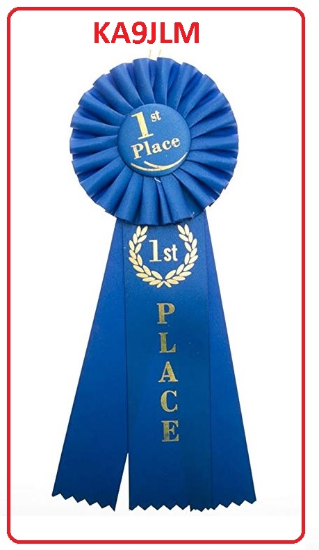 FIRST PLACE AWARD FOR KA9JLM.jpg