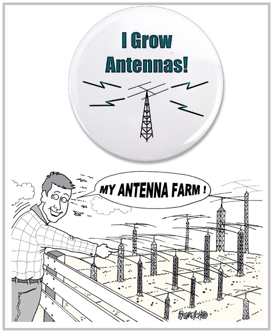 growing_antennas.jpg