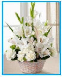 HOLY FLOWERS.jpg