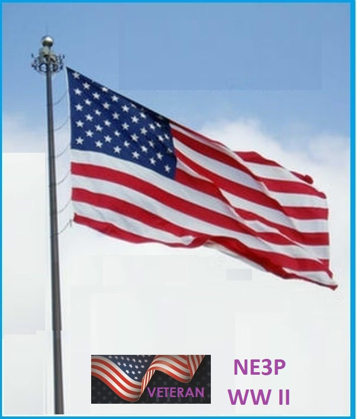 NE3P a beautiful flag carmen.jpg