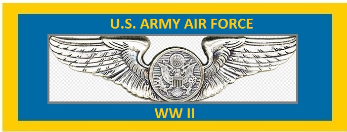 U.S. ARMY AIR FORCE.jpg
