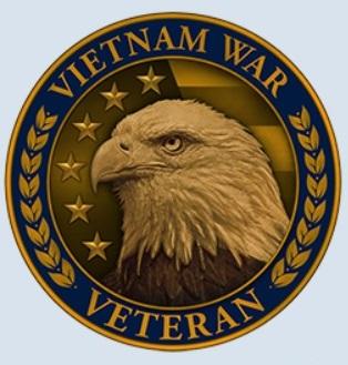 vietnam veteran lapel pin new.jpg